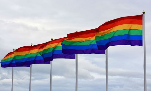 This image shows rainbow flags which represents the LGBT+ community.