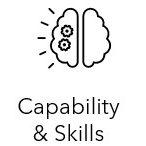 Capability and Skills